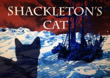 Shack cat long